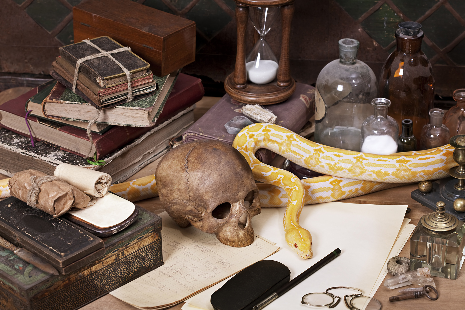 Desk with Snake and Skull