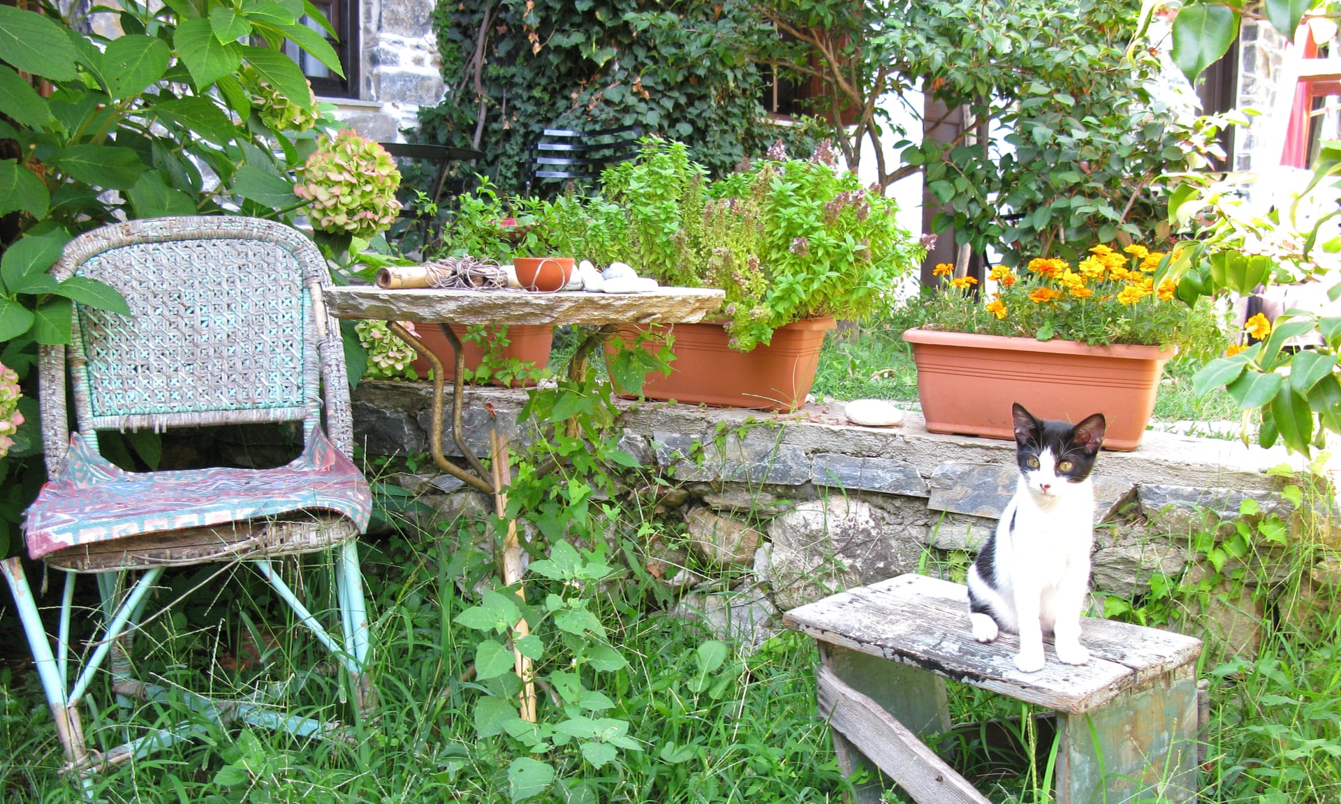 In Praise Of Unrenovated Kitchens And Overgrown Gardens