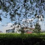 Parco di via Baranzate - percorso botanico