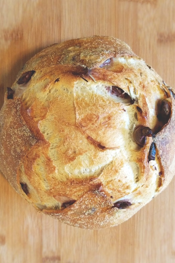 rosemary_olives_bread_boule