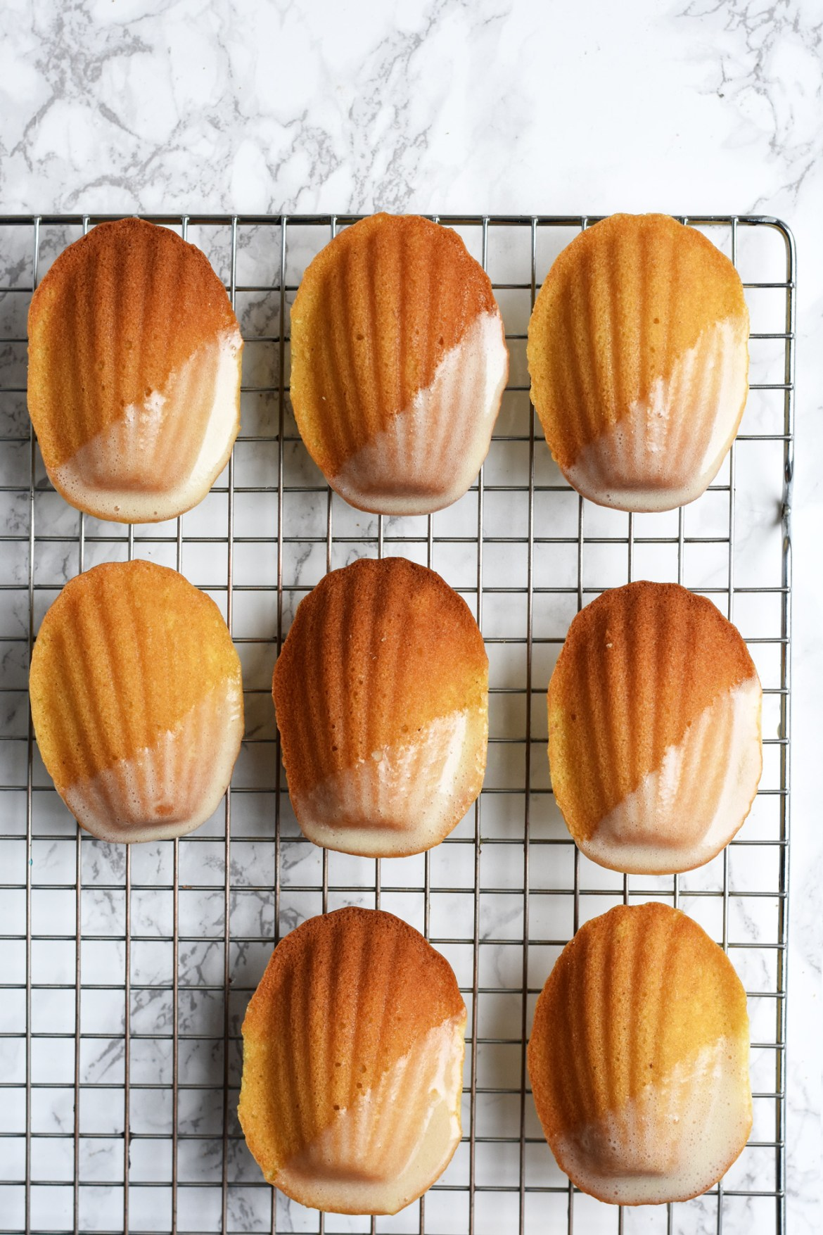 French Eggnog Madeleines