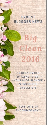 PBN Big Clean 2016 email course sign up