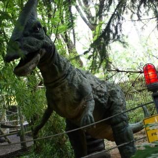 Dinosaures Aventure Nigloland (2)