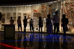 musee science ueno 4