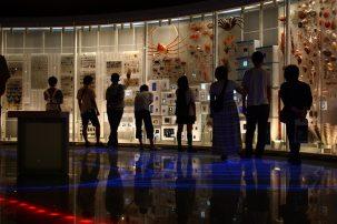 musee science ueno 4