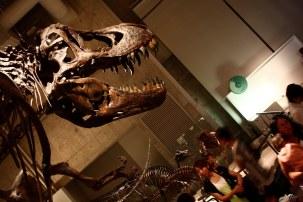 musee science ueno