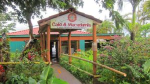 Parenthood and Passports- Cafe y Macadamia Costa Rica