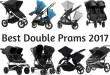 We Have Found The Best Double Prams 2017