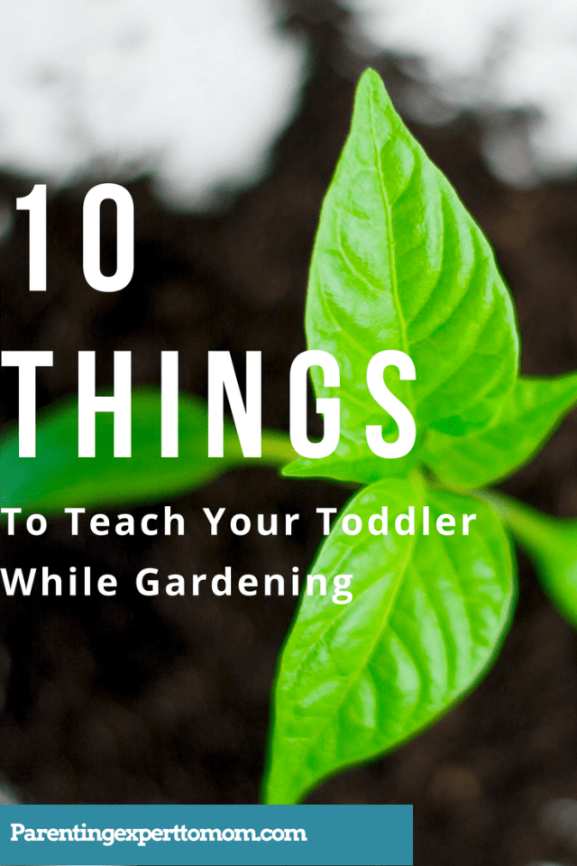 10 things to teach your toddler while gardening