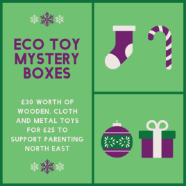 £25 Wooden/Eco Toy Mystery Box