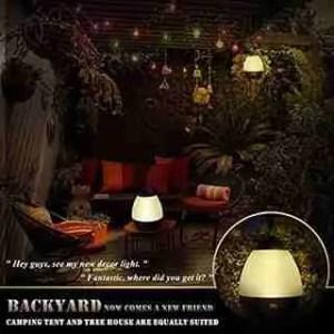 Newest-nightlight-perfect-for-backyard