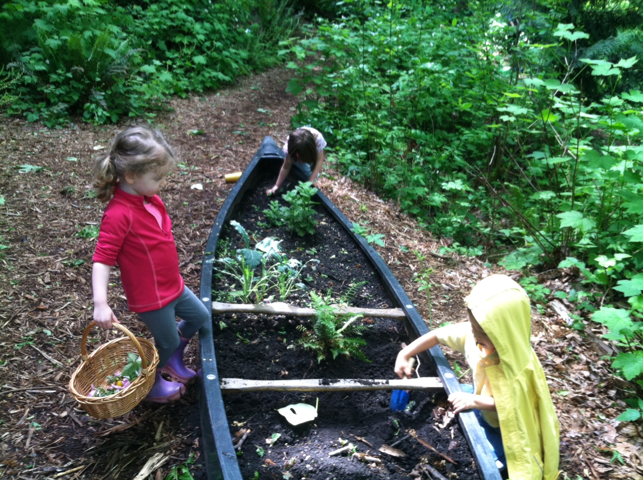 Into The Woods Outdoor And Nature Based Preschools In Seattle The Eastside And Tacoma
