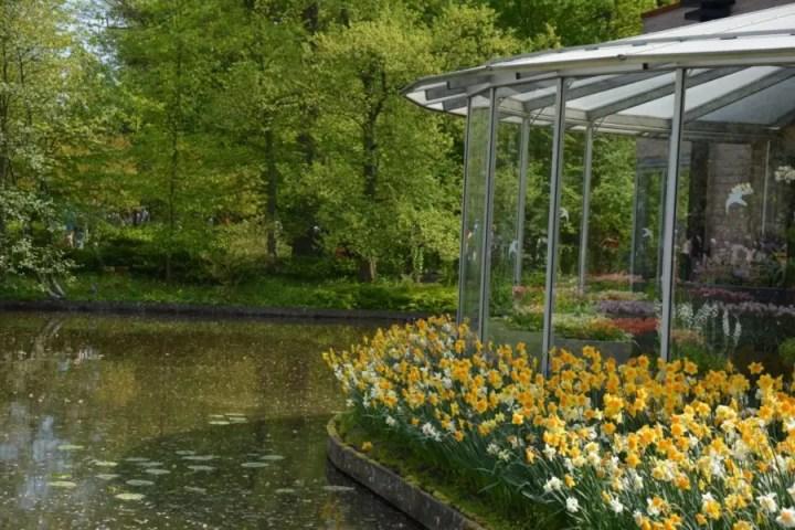 visiter Kukenhof avec des enfants Découvrez plus beau parc printanier du monde : Kukenhof aux Pays-Bas !kukenhof,paysbas,holland,fleur, tulipe,parc,parcprintanier,famille,sortie,promenade,canaux,moulinthumb_DSC_0187_1024