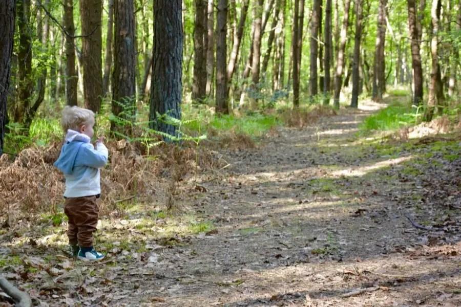 Un week-end en Normandie ! un week-end familial au vert!nature, serquigny,normandie,weekend,famille,enfant,forêt,bébéthumb_DSC_0350_1024