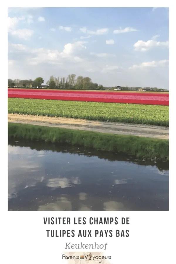 visiter les champs de tulipes aux pays bas. Keukenhof