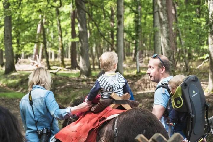 randonnée en âne en famille Loisirs Loire Valley