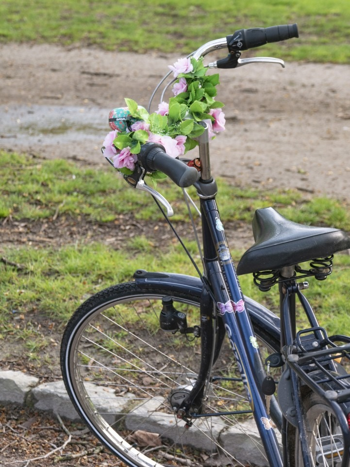 lille insolite faire du vélo hollandais