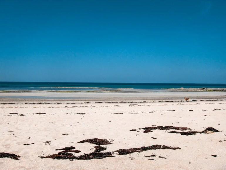 plage de Donville-les-Bains normandie