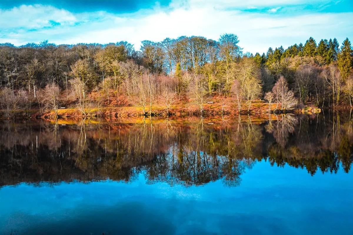 lac de de la foret de Saint Sever