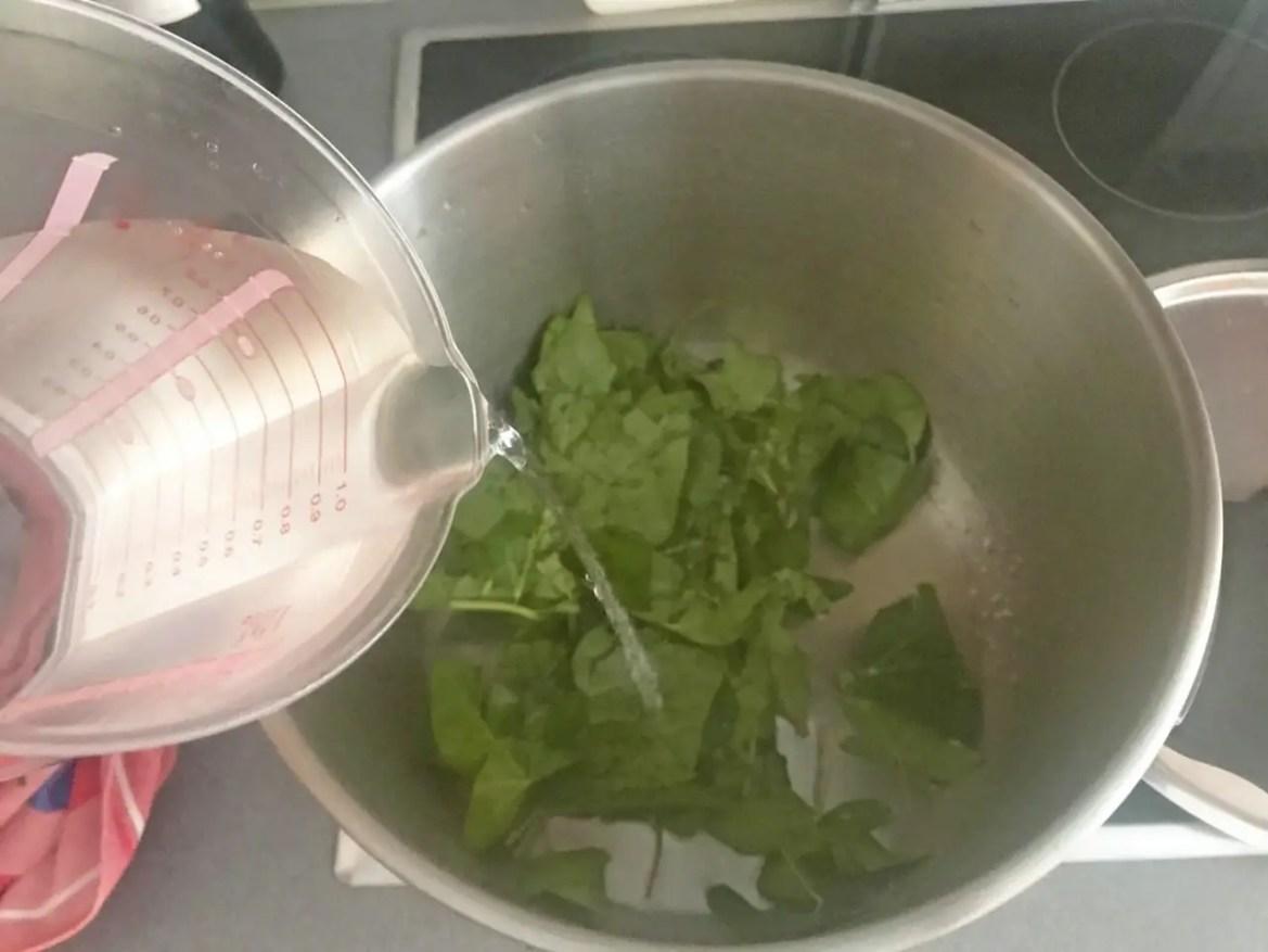 feuille de lierre dans la casserole