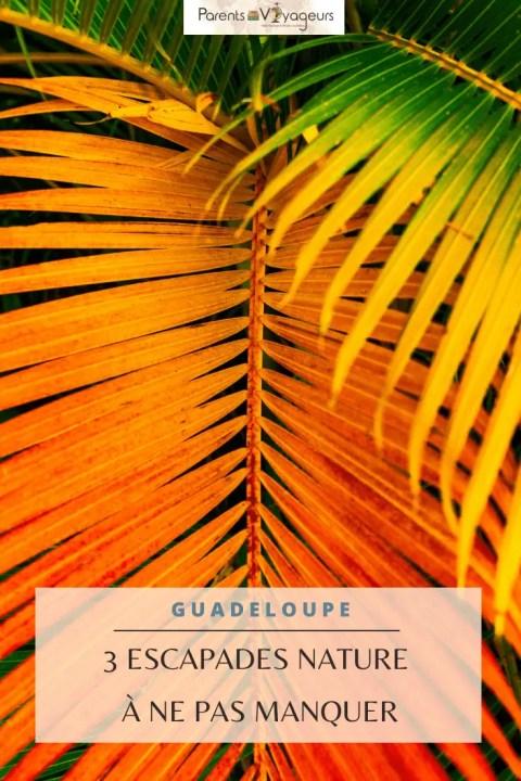 Escapades nature Guadeloupe - Pinterest