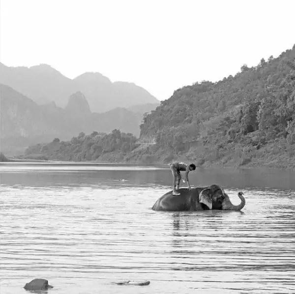 Tour du monde enfants - Eléphant Mékong