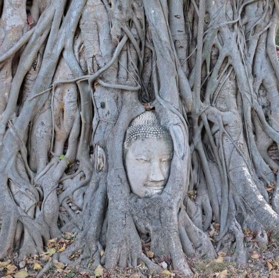 Tour du monde enfants - Thaïlande