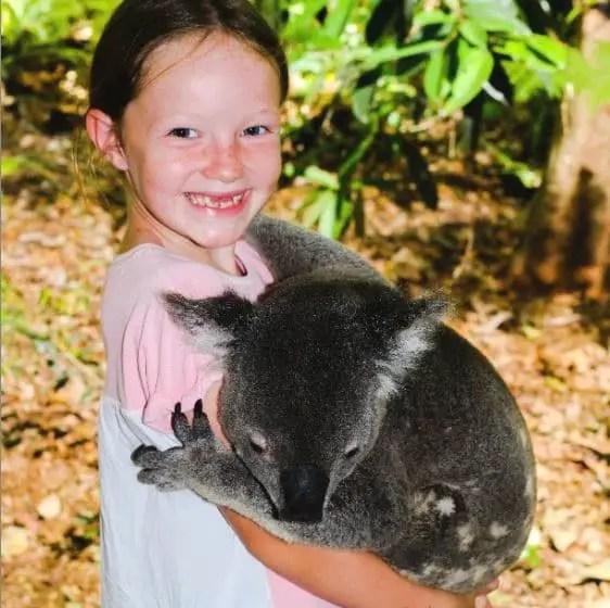 Voyage tour du monde enfants - Koala