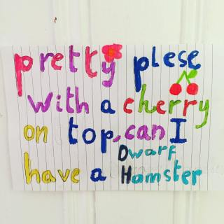 First she made one poster, then she made copies for every door in the house. I really can't cope with with rodents. not since the mice infestation during my last months at Uni. Send me all the no pet excuses known to parent kind! #parentshaped