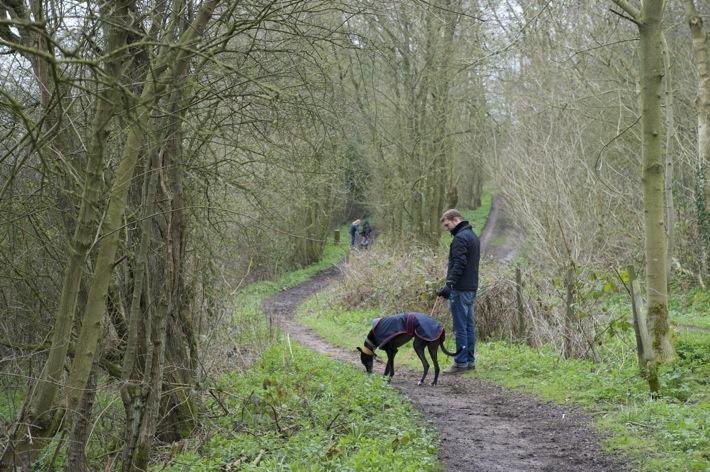 Bunny Wood Nature Walk - 1