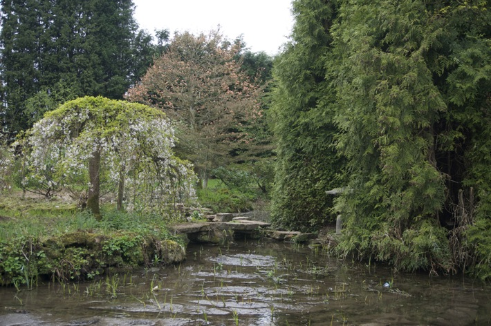 Newstead Abbey Nottinghamshire pics - 8