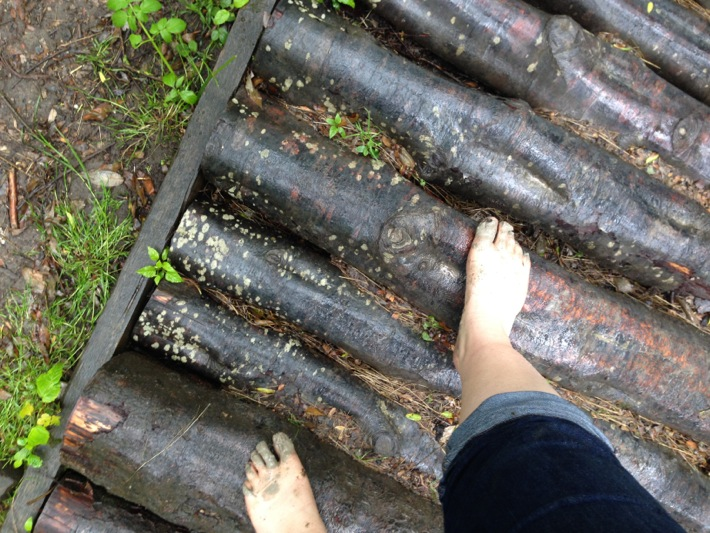 Conkers Centre, National Forest, Bushcraft and Barefoot Trail - 16