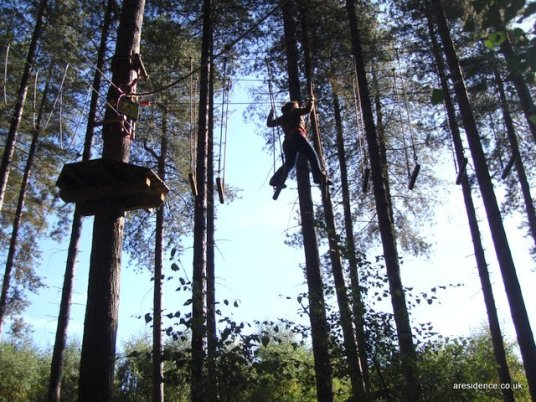Go Ape in Sherwood Pines, Nottingham
