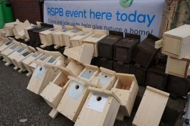 macclesfield RSPB make bird boxes