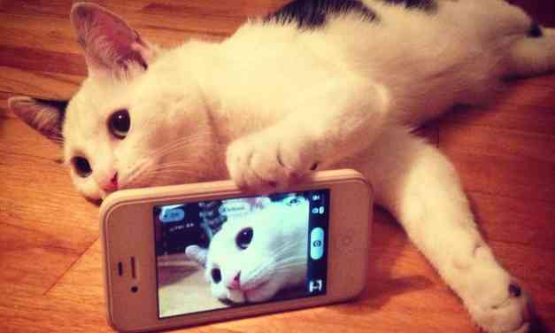 """La scienza dice che: """"Chi si fa Selfie ha disturbi mentali"""" ?"""