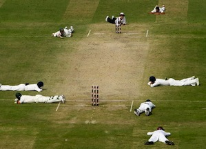 NEW DELHI, INDIA - OCTOBER 31:  Ricky Ponting and Matthew Hayden of Australia lie on the ground along with the Indian players and umpire Billy Bowden as a swarm of bees pass over the ground during day three of the Third Test match between India and Australia at the Feroz Shah Kotla Stadium on October 31,2008 in New Delhi,India.  (Photo by Michael SteeleGetty Images)