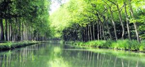 Fête de l'eau : le Port des rêves renoue avec son histoire - 17/08/2017 - ladepeche.fr