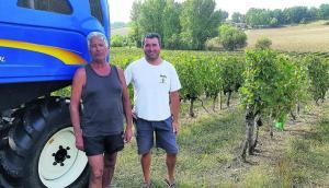 Top départ pour les vendanges dans les vignobles de Buzet - 01/09/2018 - ladepeche.fr