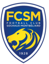 FC Sochaux-Montbéliard/Paris Saint-Germain (1-4) – 8e de finale de Coupe de France