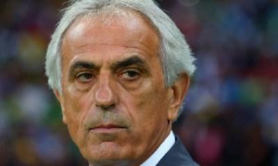 Ligue 1 - Vahid Halilhodzic a remplacé Miguel Cardoso au FC Nantes, c'est officiel