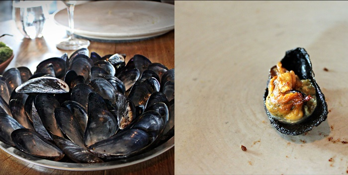 noma mussels