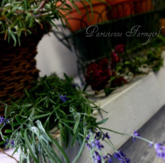 Joie de Vivre – Drying Flowers