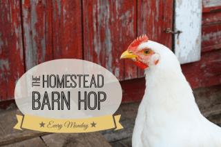 http://theelliotthomestead.com/2014/09/homestead-barn-hop-175/?utm_source=feedburner&utm_medium=feed&utm_campaign=Feed: