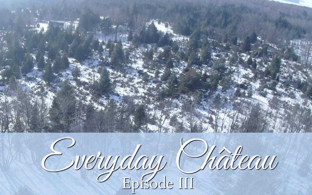 Everyday Chateau, Episode III