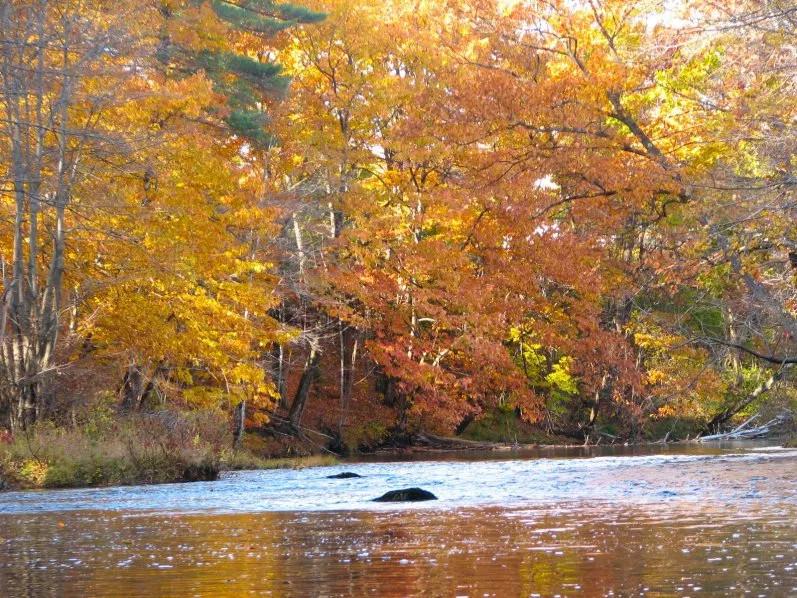 Little Androscoggin River
