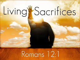 Living sacrifices Romans 12.1