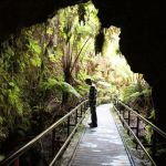 Hiking Hawaii Volcanoes National Park: The Thurston Lava Tube