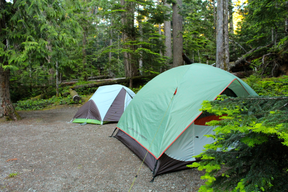 Camping in Olympic National Park:  Heart O' the Hills Campground