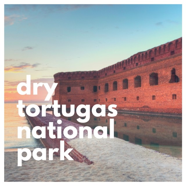 dry tortugas national park image