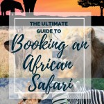 The Ultimate Guide to Booking An African Safari